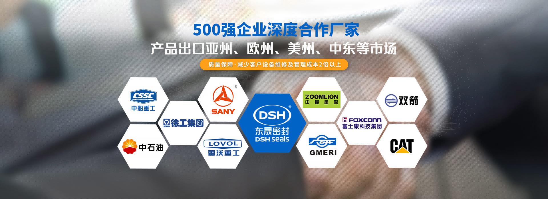 东晟密封-500强企业深度合作厂家
